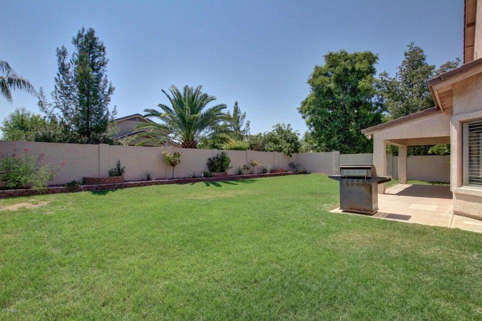 MLS 5656824 4217 E HARRISON Street, Gilbert, AZ 85295 Gilbert AZ Ashland Ranch