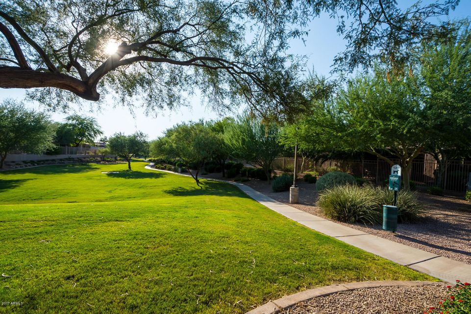 MLS 5653993 5990 S Mesquite Grove Way, Chandler, AZ 85249 Chandler AZ Mesquite Grove Estates