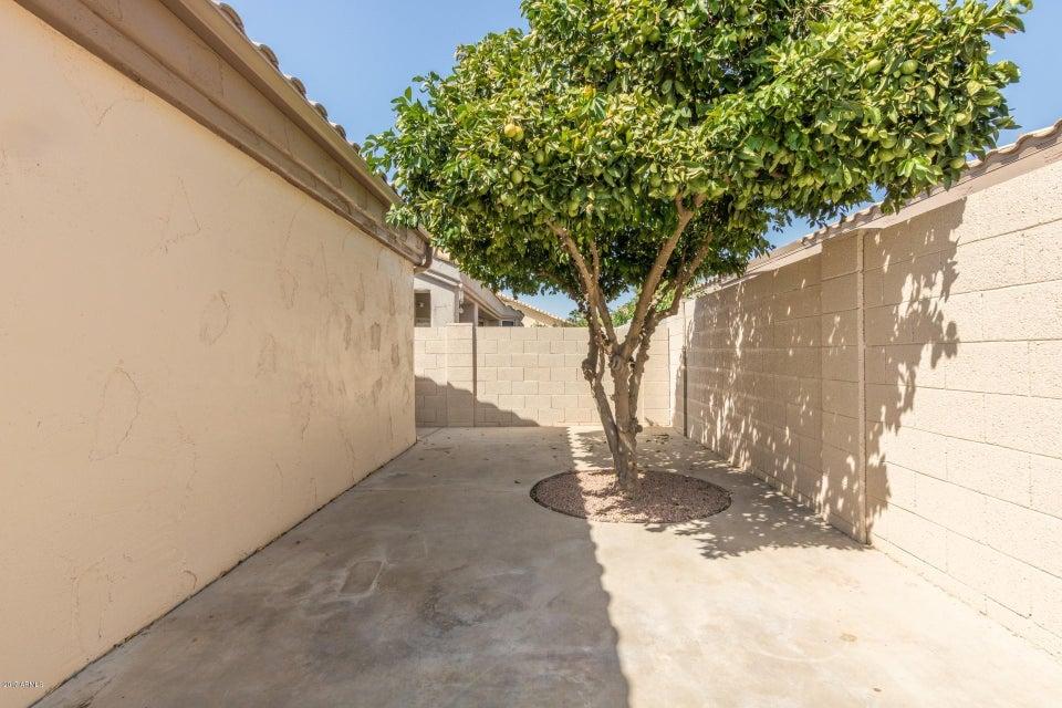 MLS 5655123 17455 N Raindance Road, Surprise, AZ 85374 Surprise AZ Sun Village