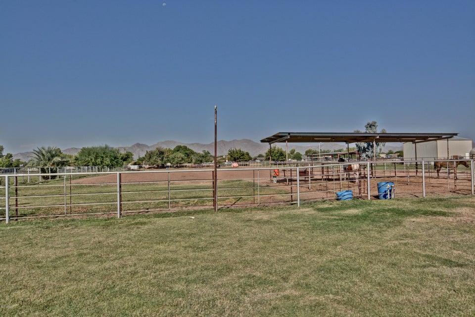 MLS 5659244 7430 N CITRUS Road, Waddell, AZ 85355 Waddell AZ Private Pool
