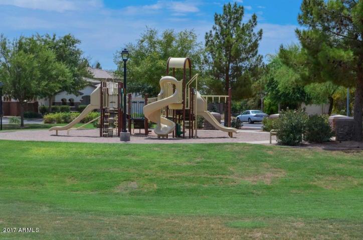 MLS 5651616 224 W SEAGULL Place, Chandler, AZ 85286 Chandler AZ Arden Park