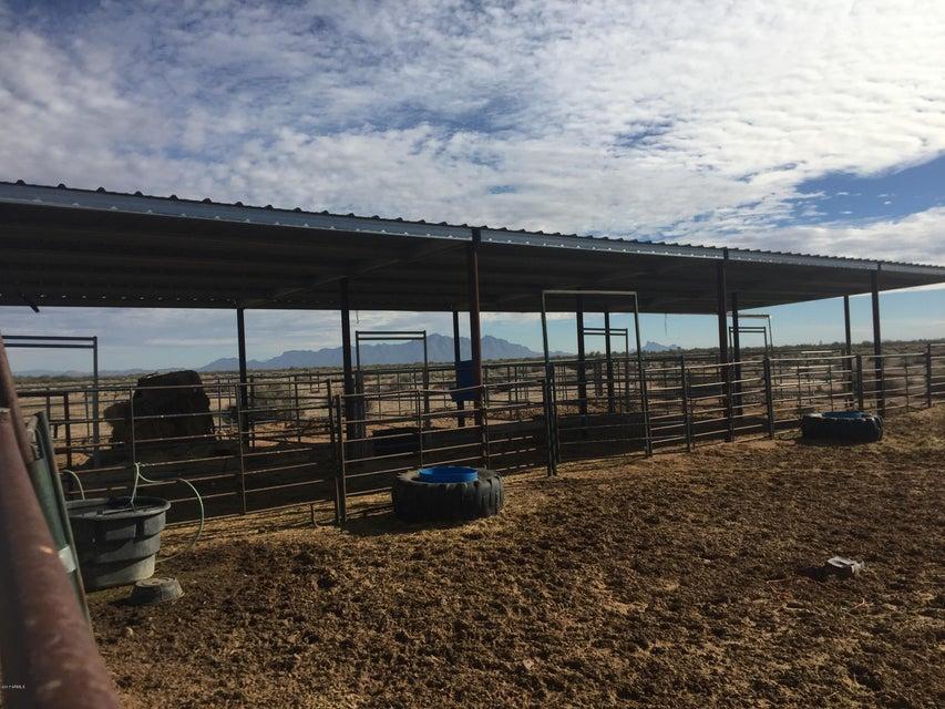 MLS 5661862 2995 W HANON Road, Casa Grande, AZ Casa Grande AZ Equestrian