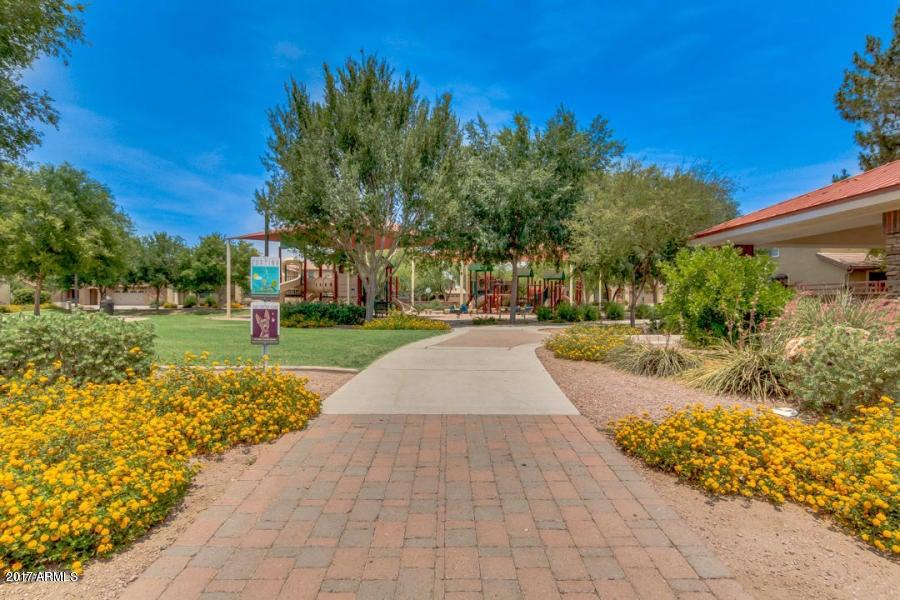MLS 5660585 19085 E KINGBIRD Court, Queen Creek, AZ Queen Creek AZ Golf