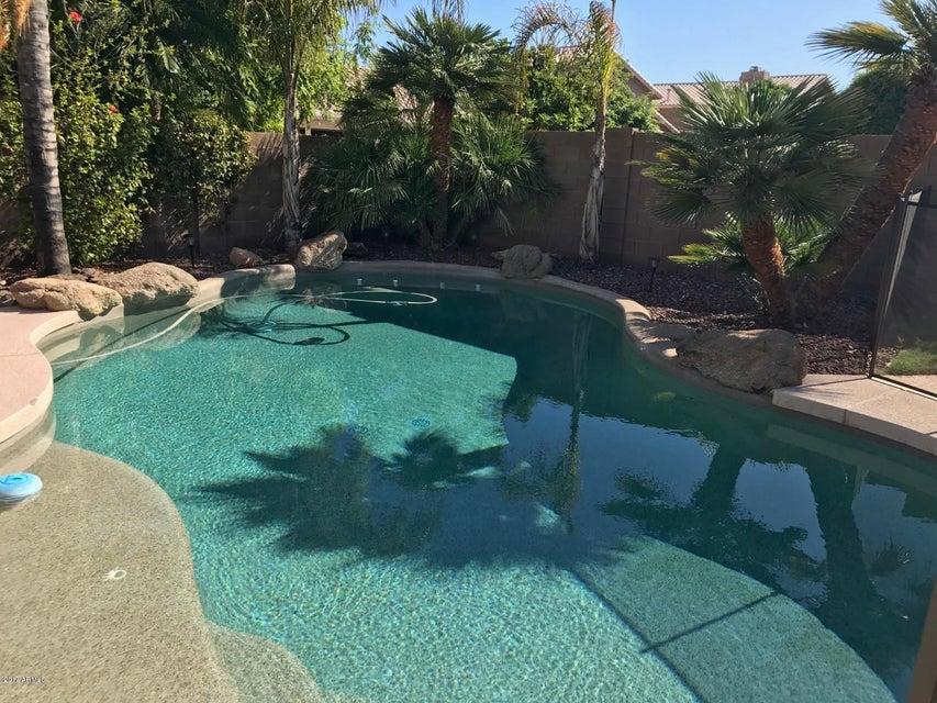 MLS 5662140 2595 S COMANCHE Drive, Chandler, AZ 85286 Chandler AZ Clemente Ranch