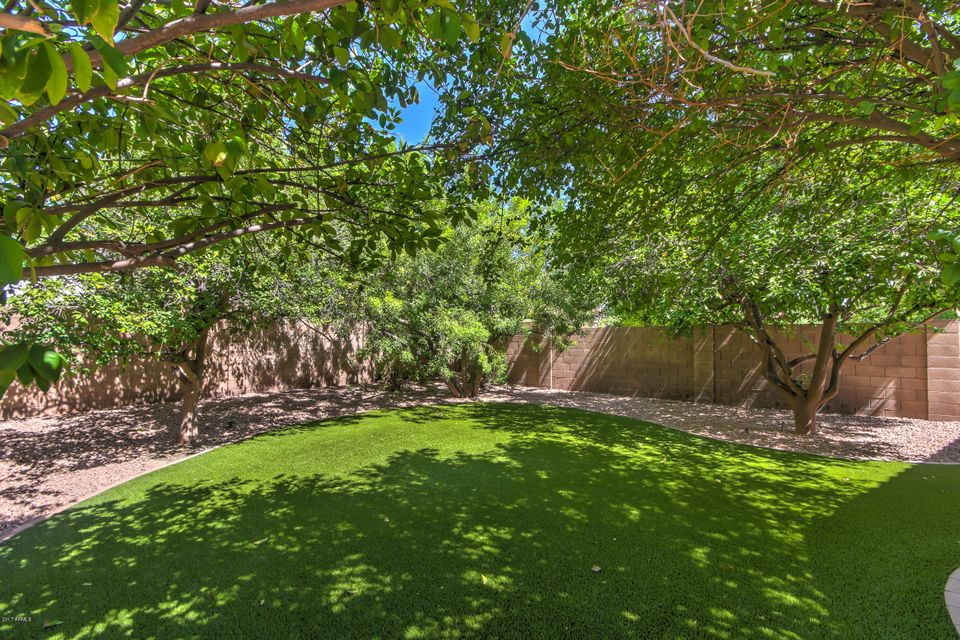 MLS 5663420 4852 W Oakland Street, Chandler, AZ 85226 Chandler AZ Carrillo Ranch