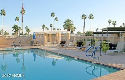 MLS 5665443 3300 E BROADWAY Road Unit 148, Mesa, AZ Mesa AZ Adult Community