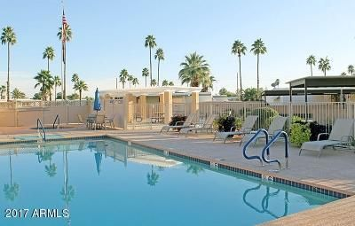 MLS 5665803 3300 E BROADWAY Road Unit 157, Mesa, AZ Mesa AZ Affordable