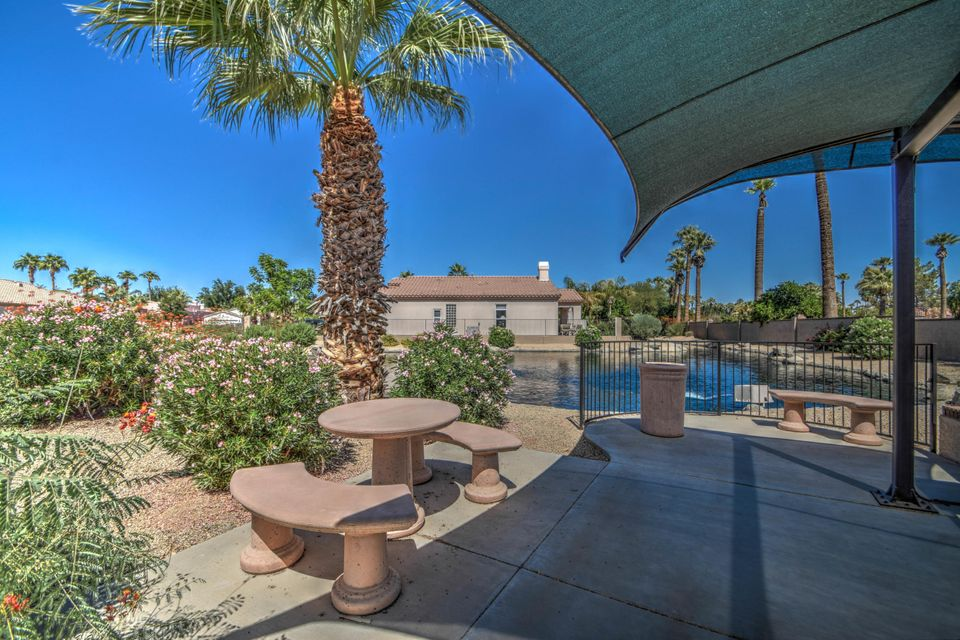 MLS 5667025 14127 W BENT TREE Circle, Litchfield Park, AZ Litchfield Park AZ Gated