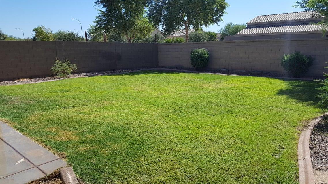 MLS 5630508 11129 W BRITTLEWOOD Drive, Phoenix, AZ 85037 Phoenix AZ Camelback Ranch