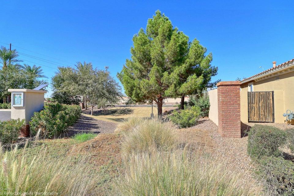 MLS 5671107 2028 E HACKBERRY Place, Chandler, AZ Markwood North