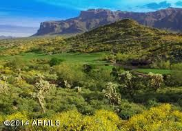 3818 S AVENIDA DE ANGELES Gold Canyon, AZ 85118 - MLS #: 5671320