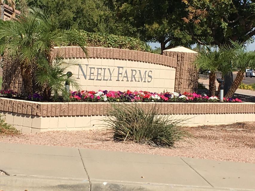 MLS 5672994 685 E CATHY Drive, Gilbert, AZ 85296 Gilbert AZ Neely Farms