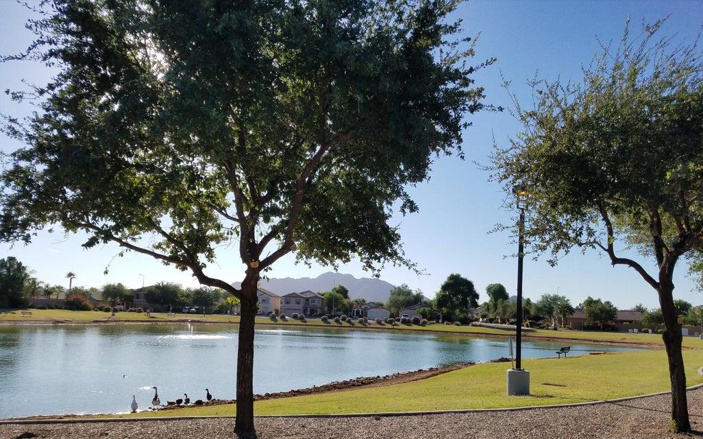 MLS 5672893 4903 E LA COSTA Drive, Chandler, AZ 85249 Chandler AZ Sun Groves