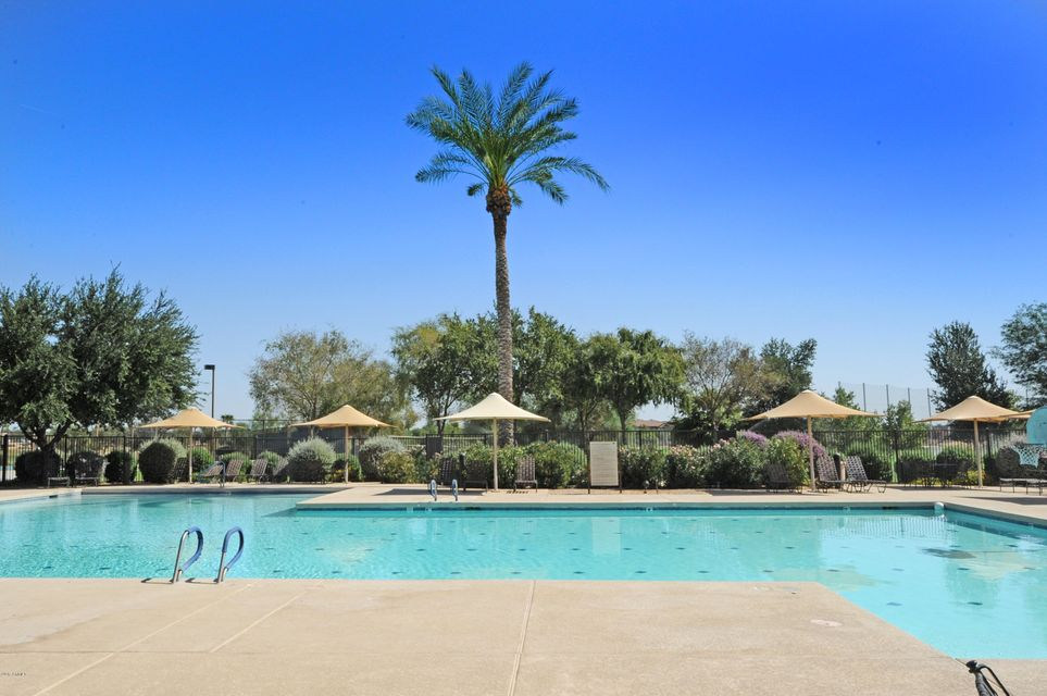 MLS 5673902 14539 W SHERIDAN Street, Goodyear, AZ 85395 Goodyear AZ Palm Valley