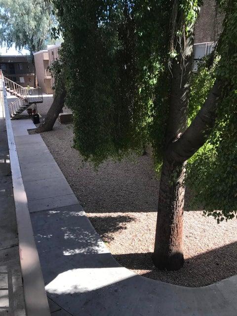 MLS 5675307 18202 N CAVE CREEK Road Unit 214, Phoenix, AZ Phoenix AZ Condo or Townhome