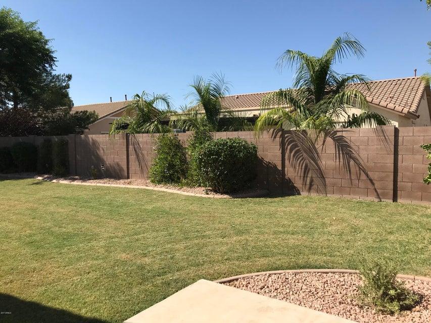 MLS 5677671 18616 E CATTLE Drive, Queen Creek, AZ 85142 Cortina