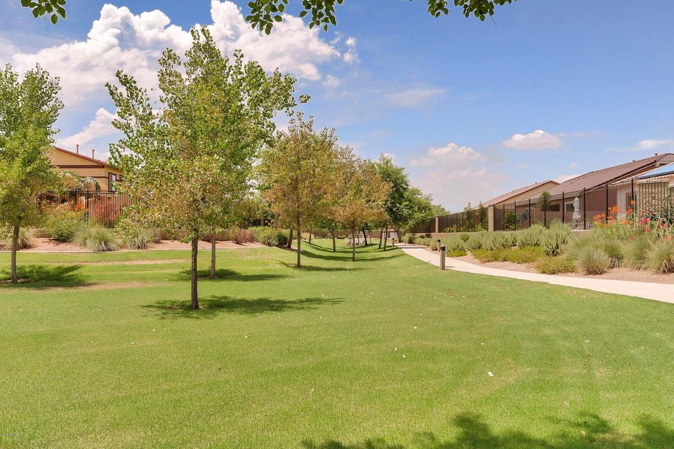 MLS 5676156 4447 S SQUIRES Lane, Gilbert, AZ Gilbert AZ Luxury
