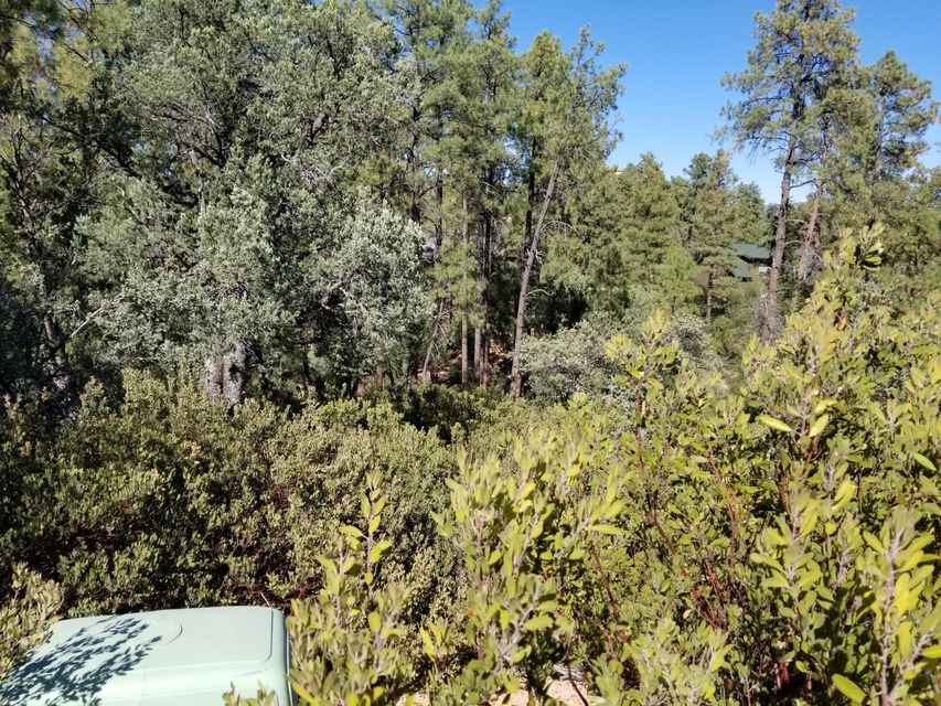 3012 E THUNDER Point Payson, AZ 85541 - MLS #: 5676174