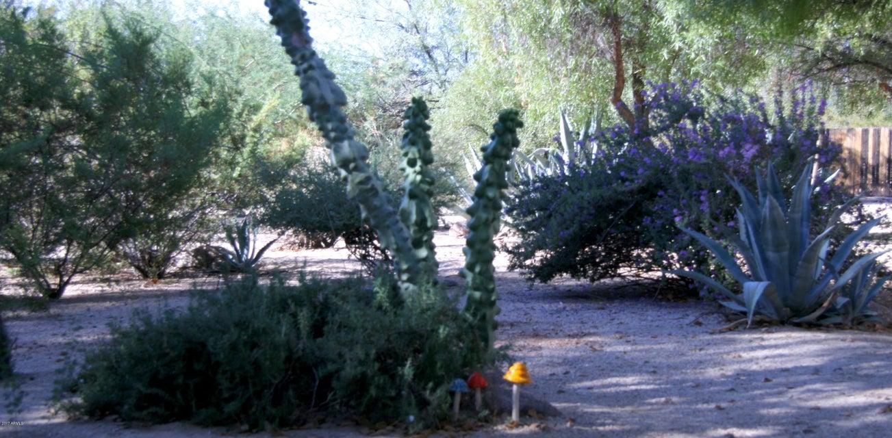 MLS 5677377 10210 N 64TH Place, Paradise Valley, AZ Paradise Valley AZ Private Pool