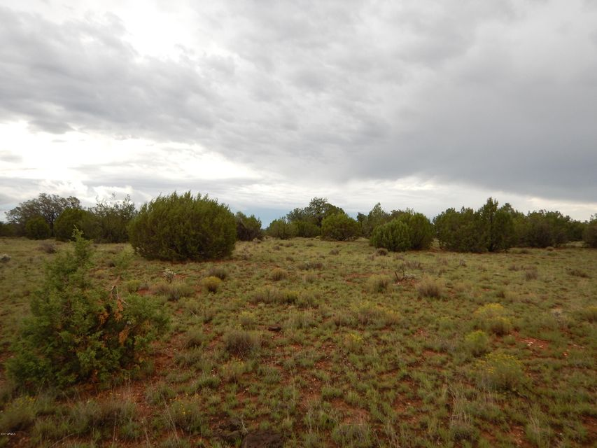 Lot 210 Brothers Boulevard Seligman, AZ 86337 - MLS #: 5677874