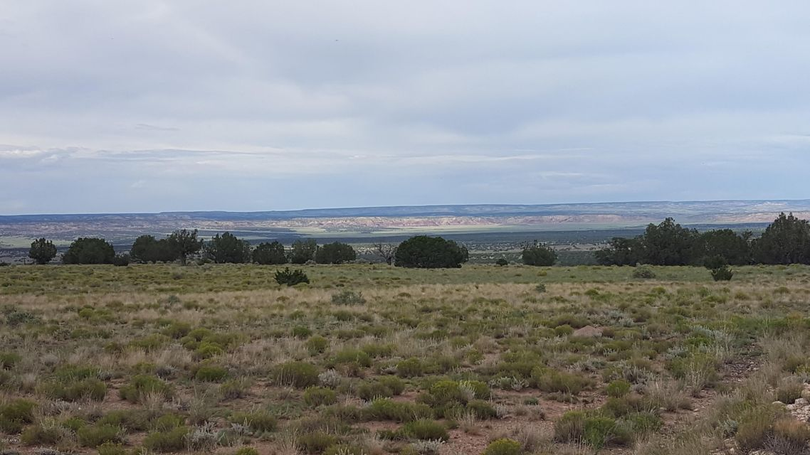 Lot 40 E Apache County Road 6040 Road St Johns, AZ 85936 - MLS #: 5678257