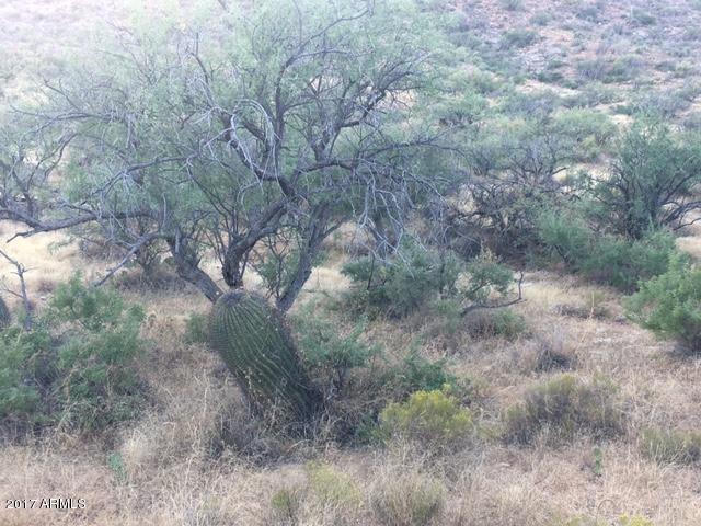 17042 S SIERRITA MOUNTAIN Road Tucson, AZ 85736 - MLS #: 5678263