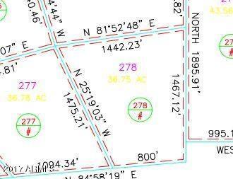 CCR Unit 3 Lot 278 Heber, AZ 85928 - MLS #: 5678363