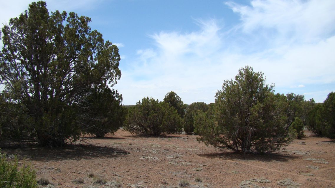 2095 Christopher Trail Show Low, AZ 85901 - MLS #: 5678381