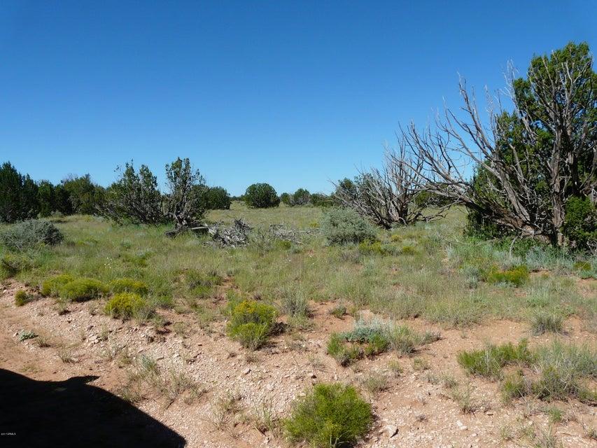 5960 Dark Canyon Drive Heber, AZ 85928 - MLS #: 5678767