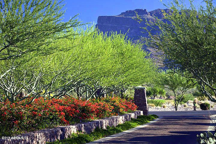 MLS 5678858 8703 E LOST GOLD Circle, Gold Canyon, AZ Gold Canyon AZ Newly Built
