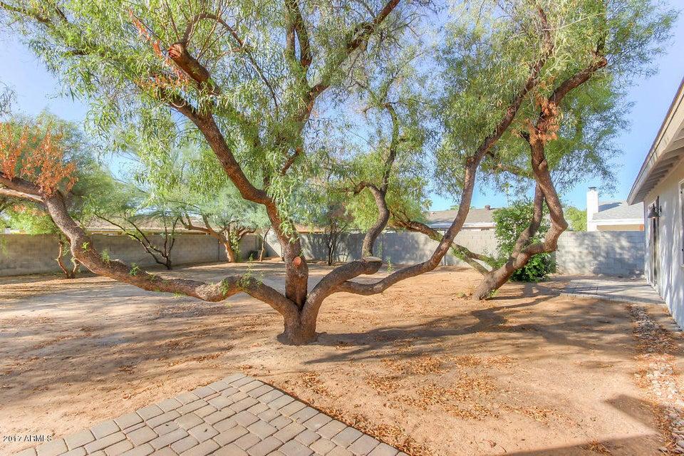 3711 E GELDING Drive Phoenix, AZ 85032 - MLS #: 5681513