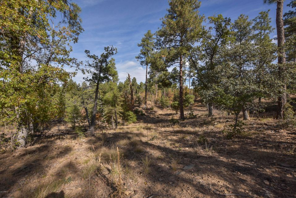 3190 C W TREE TOPS Trail Prescott, AZ 86303 - MLS #: 5680148