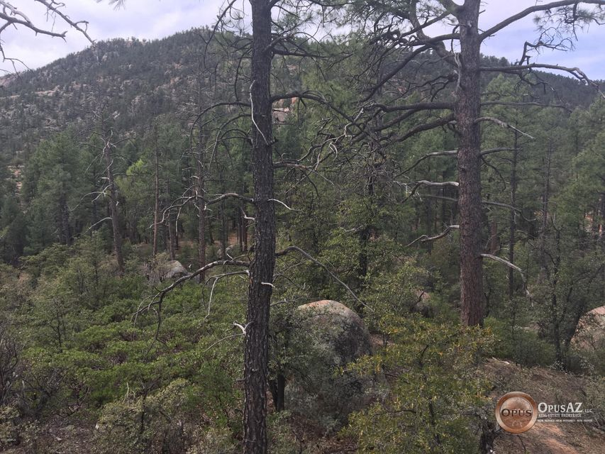 - S Bent Tree Circle Payson, AZ 85541 - MLS #: 5680173