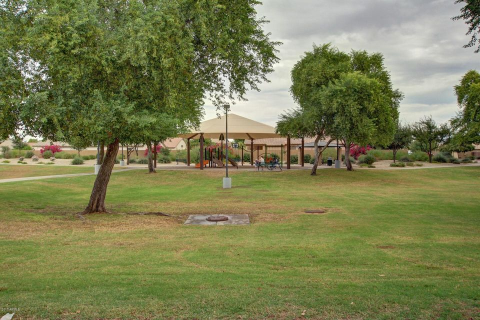 MLS 5681614 4210 E AUGUSTA Avenue, Chandler, AZ 85249 Chandler AZ Sun Groves