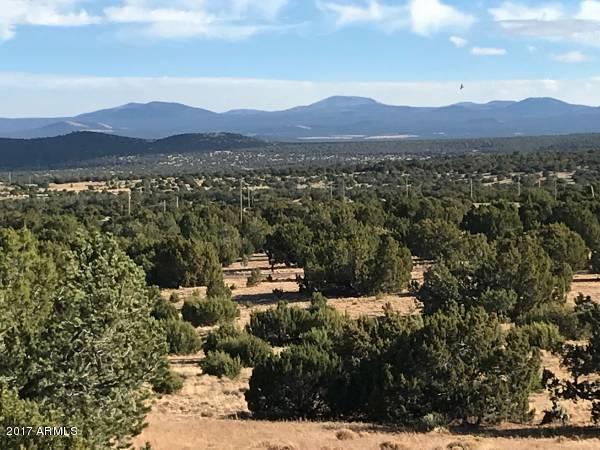 XX W Country Rd/Trail Drive Concho, AZ 85924 - MLS #: 5684707
