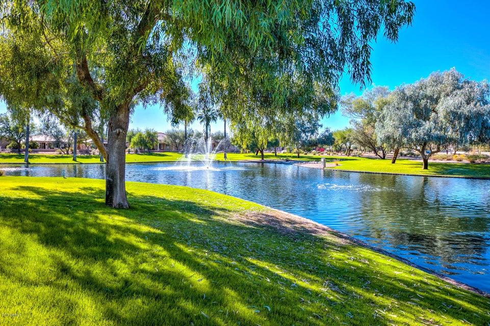 MLS 5686639 3020 E COUNTY DOWN Drive, Chandler, AZ 85249 Chandler AZ Adult Community
