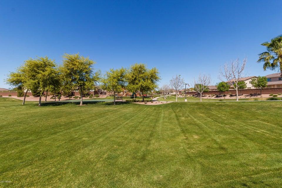 MLS 5687441 1240 W DOVE TREE Avenue, San Tan Valley, AZ 85140 San Tan Valley AZ 5 or More Bedroom