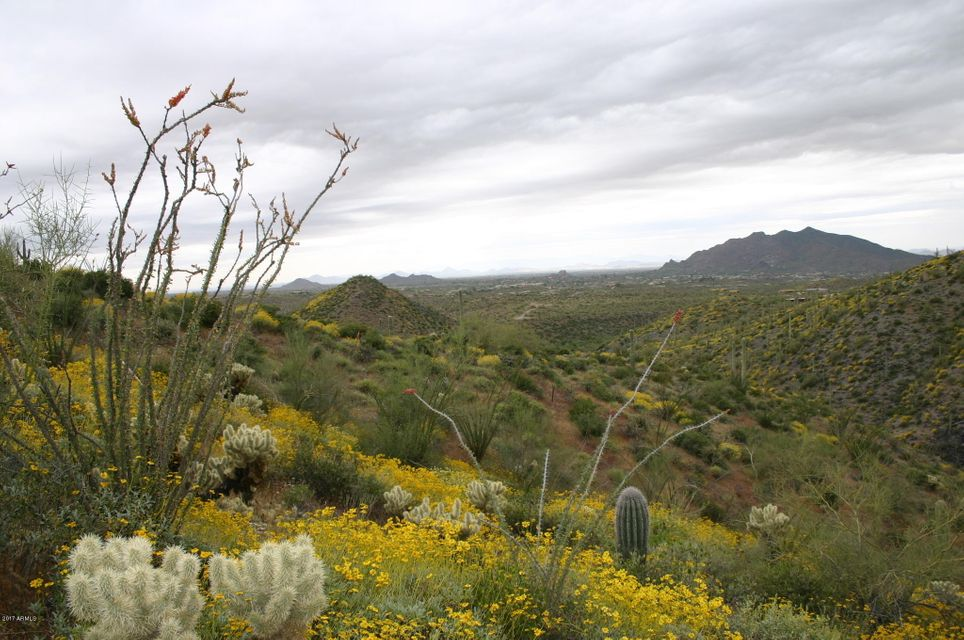 40802 N BRANGUS Road Scottsdale, AZ 85262 - MLS #: 5687369