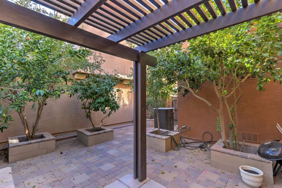 MLS 5689494 2999 E HARRISON Street, Gilbert, AZ 85295 Lyons Gate