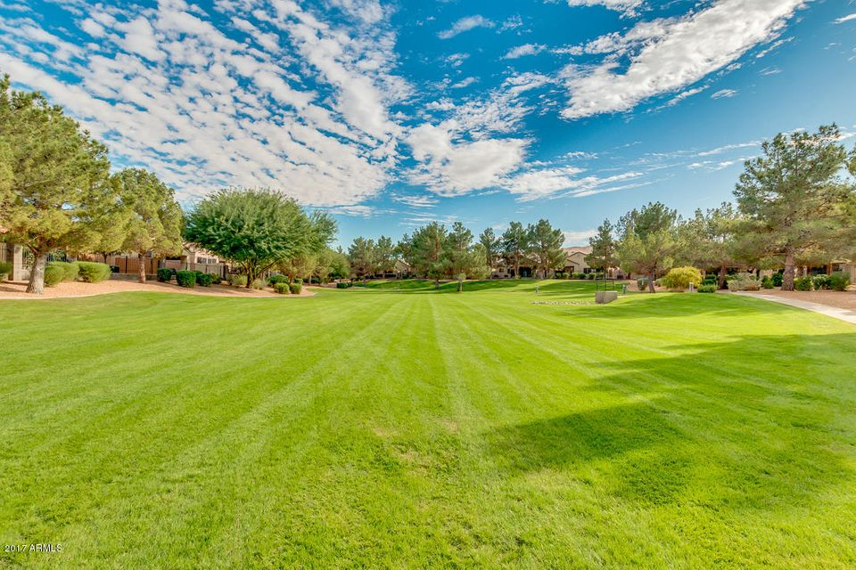 MLS 5689959 3237 E FREMONT Road, Phoenix, AZ 85042 Phoenix AZ The Raven