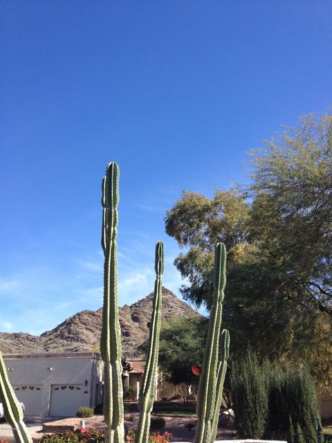 1931 E LINGER Lane Phoenix, AZ 85020 - MLS #: 5690068