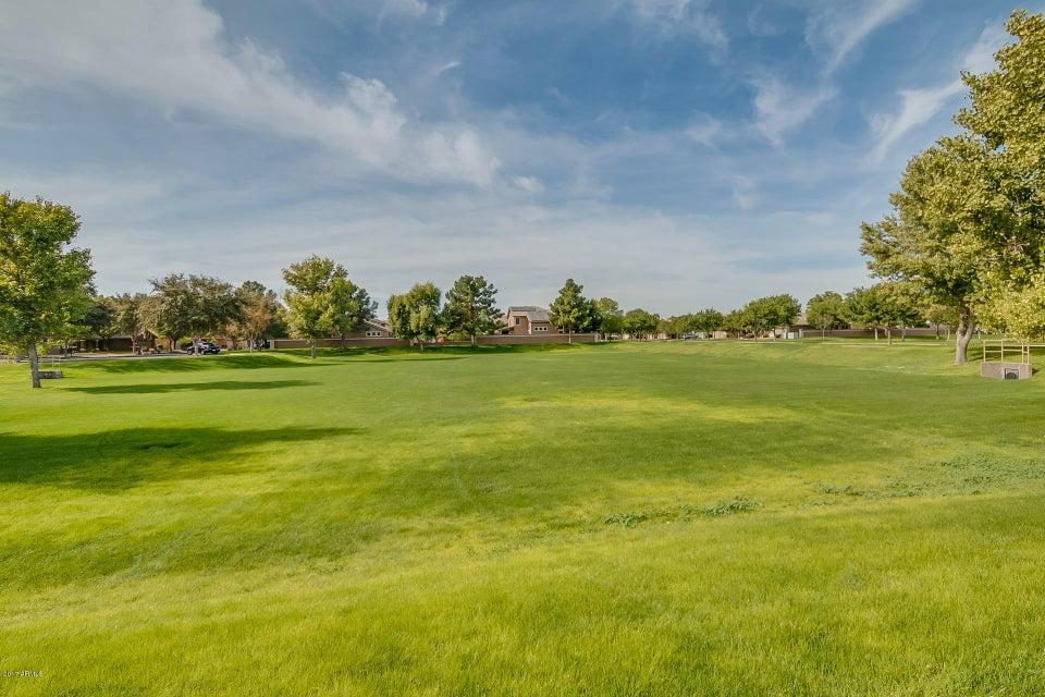 MLS 5690696 3441 E BRUCE Avenue, Gilbert, AZ 85234 Gilbert AZ Higley Groves