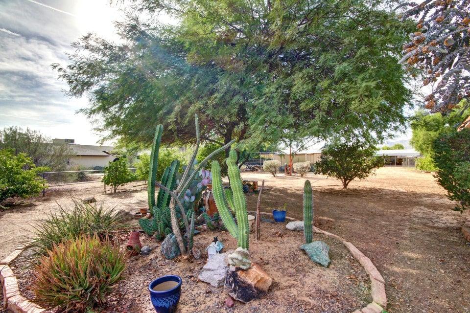 MLS 5671930 7440 N 173rd Avenue, Waddell, AZ Waddell AZ Private Pool