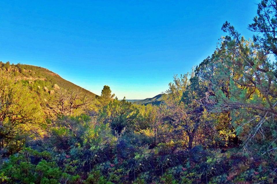 MLS 5700758 2092 E LANCE Drive, Payson, AZ Payson AZ Scenic