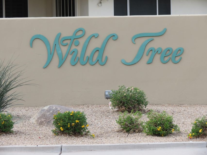 MLS 5693070 4762 W Toledo Street, Chandler, AZ 85226 Chandler AZ Wild Tree