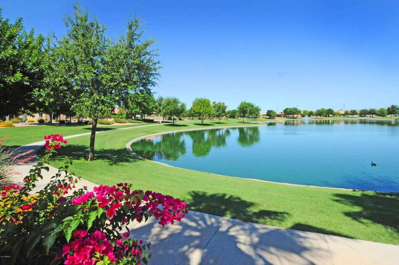 MLS 5705739 10101 E CEDAR WAXWING Drive, Sun Lakes, AZ 85248 Sun Lakes AZ Three Bedroom