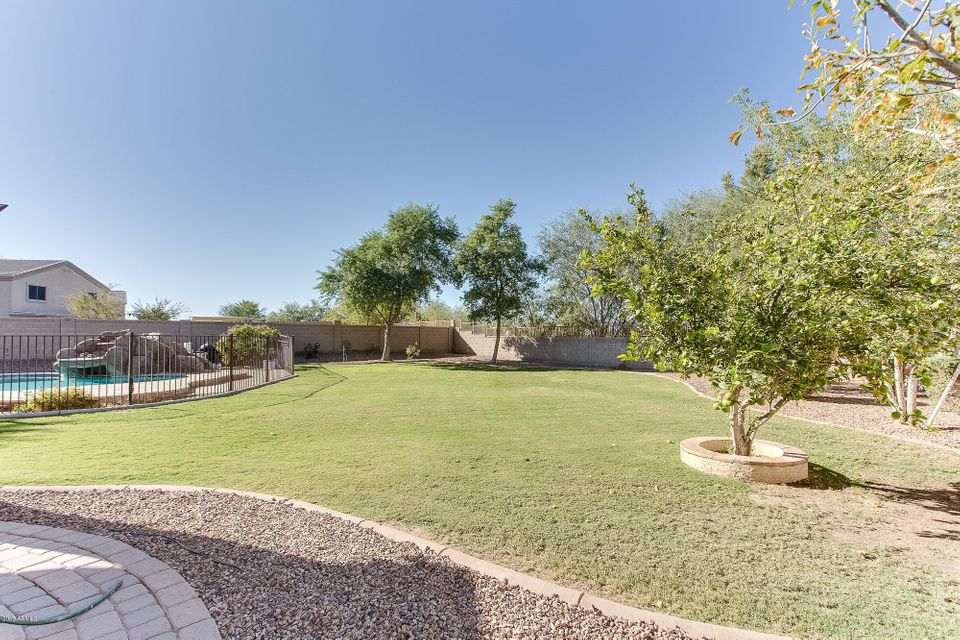 MLS 5694827 19042 N IBIS Way, Maricopa, AZ 85138 Maricopa AZ Private Pool