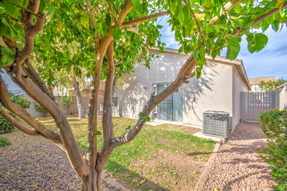MLS 5695609 11543 W WINDROSE Avenue, El Mirage, AZ El Mirage AZ Luxury