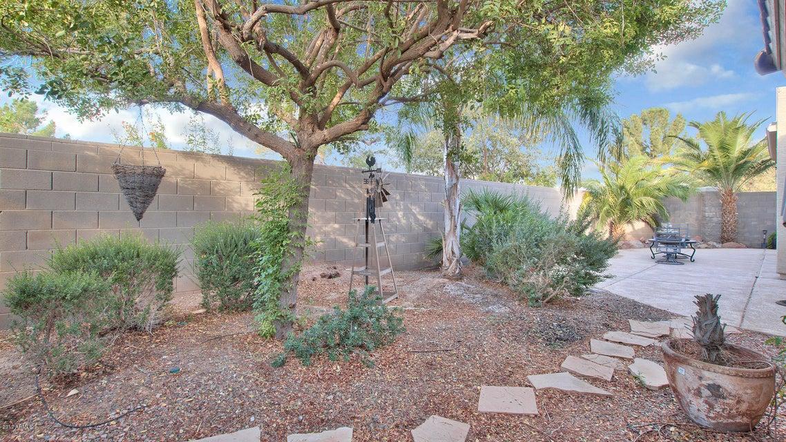 MLS 5696552 20190 N BIG DIPPER Drive, Maricopa, AZ Maricopa AZ Adult Community