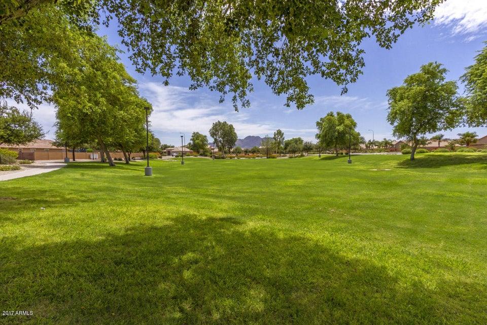 4766 E THUNDERBIRD Drive Chandler, AZ 85249 - MLS #: 5696868